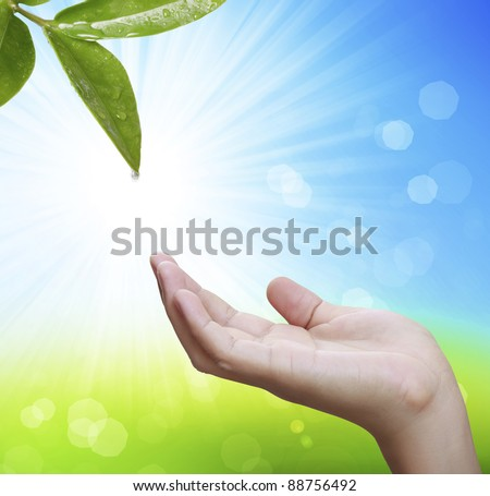 The person holds in a hand a leaf