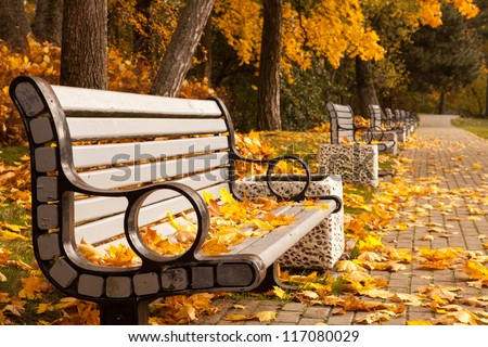 The perspective of the row of benches in autumn park while fall - stock photo
