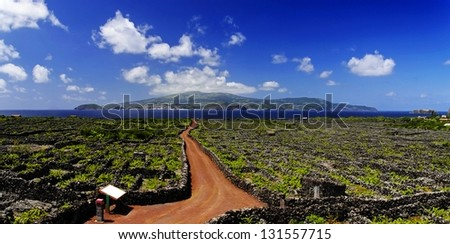 The Pico vineyards inscribed on the World Heritage List, Pico island, Azores, - stock photo
