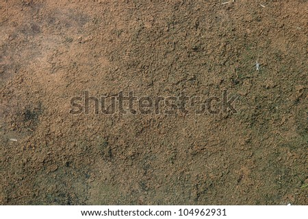 The picture of the old silted bottom of the pool - stock photo