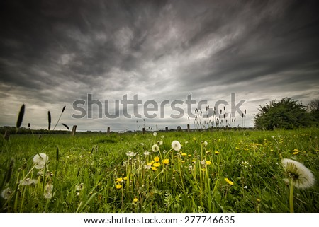 The picture shows a meadow and an approaching storm. - stock photo