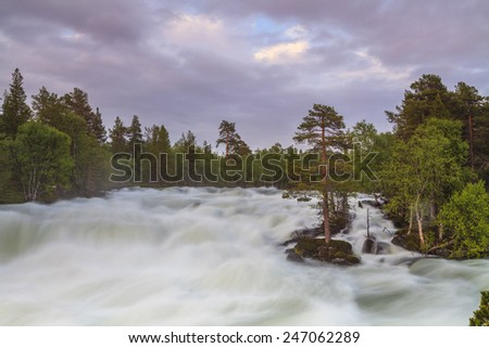 The picturesque landscape with a view of the mountain river and forest.
