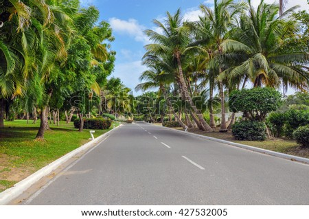 The picturesque paved road in Punta Cana, Dominican Republic - stock photo