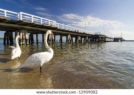 the pier in City Sopot - Poland - stock photo