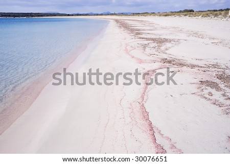 The pink sandy beach with turquoise water.