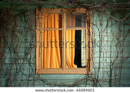 The place where spends the night the sun. An old frame with the orange curtains, surrounded with a rod of wild grapes. Night. - stock photo