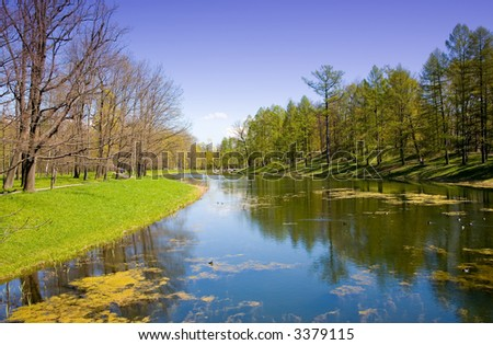 the pond in park at spring sunny day