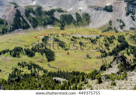 The ponds and streams of picturesque Elysian Fields in Mt. Rainier National Park, Washington State, USA. - stock photo