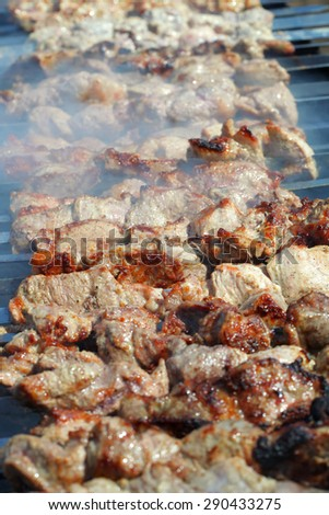 The pork shish kebab prepares on fire and a smoke, a meat dish on a brazier. - stock photo
