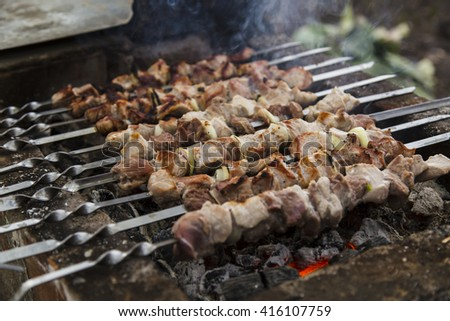 The pork shish kebabs prepared on a brazier for a holiday - stock photo