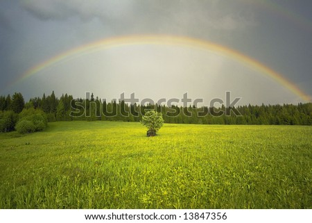 the rainbow over the field landscape - stock photo
