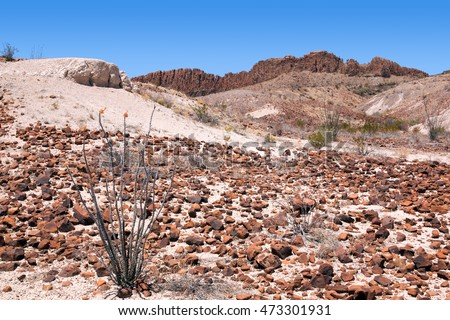 The rash of red sedimentary rock debris. Big Bend National Park, Texas, United States