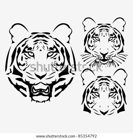 the raster abstract tiger head set