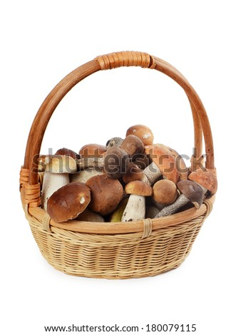 The raw boletus edulis in a basket - stock photo
