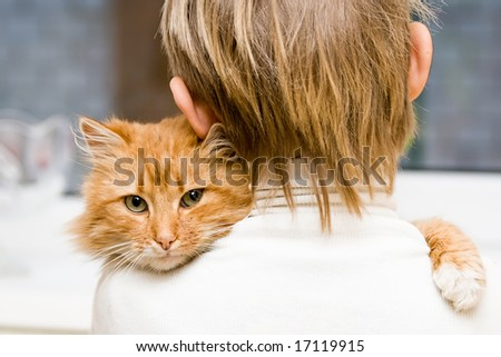 The red cat sitting on a shoulder at the child - stock photo