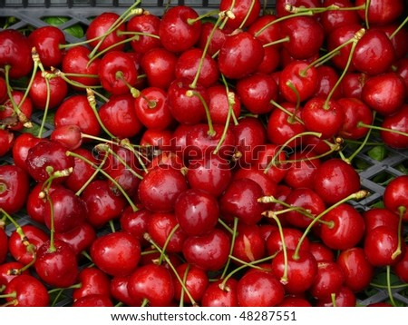 The red cherry fruit pattern