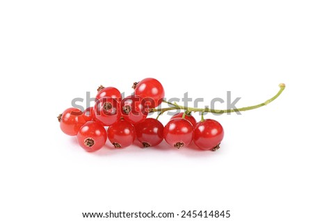 The red currant isolated on white background - stock photo