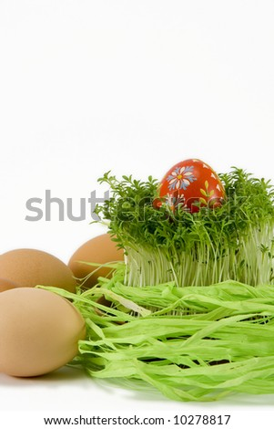 the red egg with cress - stock photo