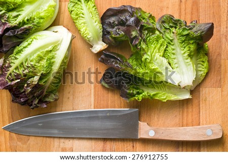 the red lettuce on kitchen table - stock photo