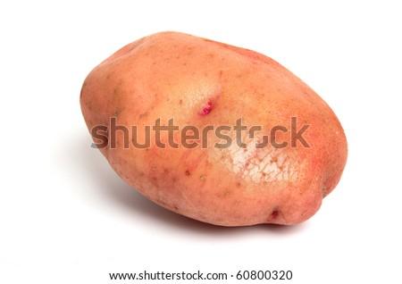 the red miniature potato isolated on white background - stock photo