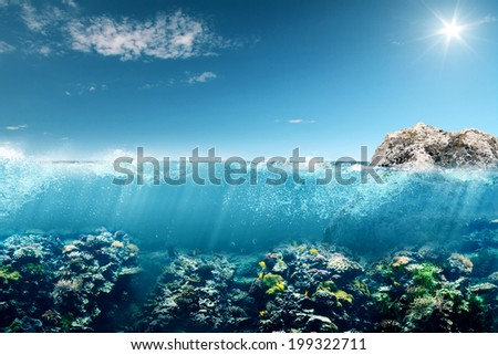The Reef - stock photo