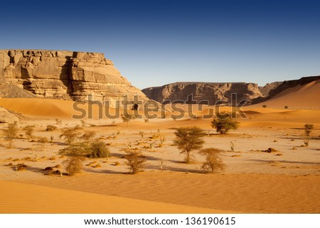 The removed rocks the remains of ancient volcanoes in the middle of desert. Dense sand with edge structure.  The Libyan desert - a fantastic place for travelers and photographers. - stock photo