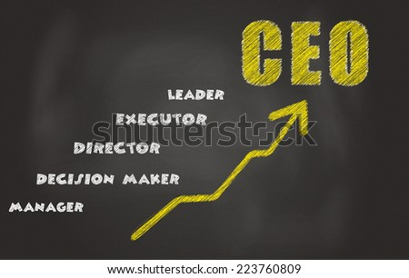 The Responsibilities Of CEO, Written On A Black Board - stock photo