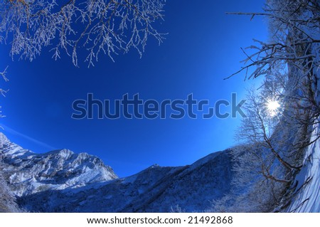 The rime on trees and the mountain which froze(HDR) - stock photo
