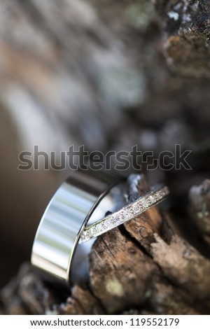 The rings of the bride and the groom being photographed in a tree. - stock photo