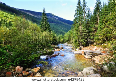 The river Bear Creek in the national park Krkonose in the Czech Republic - stock photo