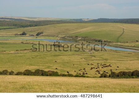 The River Cuckmere estuary with meanders at Cuckmere Haven in East Sussex, England