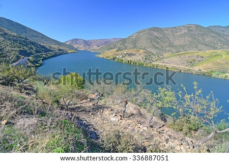 The River Douro in northern Portugal, surrounded by hills covered in vines.  - stock photo