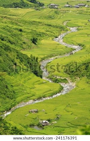 The river flows through the village from the top.(Vietnam) - stock photo