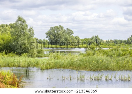 The river forelands of the Rhine near Nijmegen in the Netherlands - stock photo