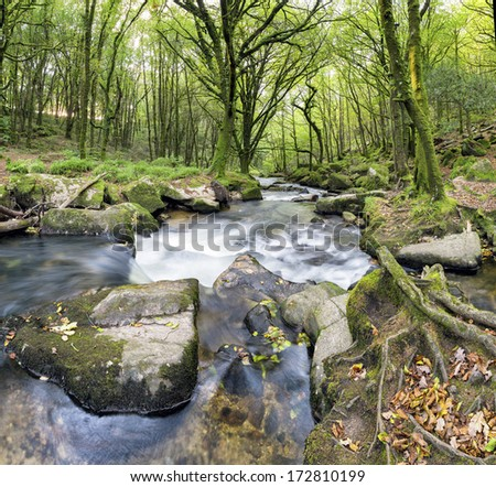 The river Fowey flowing over mossy boulders at Golitha Falls on the southern edge of Bodmin Moor in Cornwall
