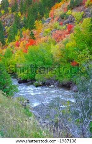 The River in the Fall