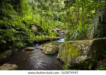 The River Pakrisan. Located near the sacred temple of Gunung Kawi, the river Pakrisan flows through rainforest and tropical jungle on the idyllic island of Bali, Indonesia. - stock photo