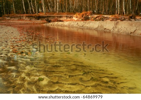 The river runs along the beach in the autumn against the backdrop of birch forest. - stock photo