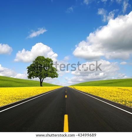 The road forward - stock photo