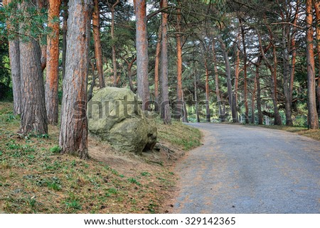 The road in pine park of city Kislovodsk. Northern foothills of Greater Caucasus - stock photo