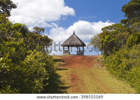 The road in the wood, Mauritius - stock photo