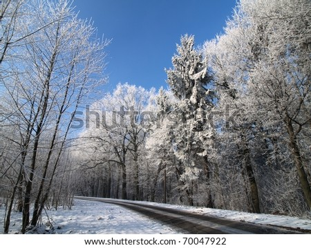 The road in winter - stock photo