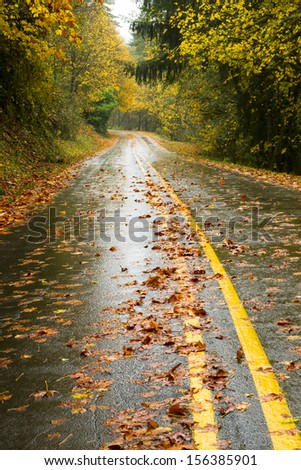 The road is slick and wet during fall rain autumn leaves from season change - stock photo