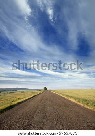 The Road leaves to horizon under unclear sky amongst plain with increasing wheat.