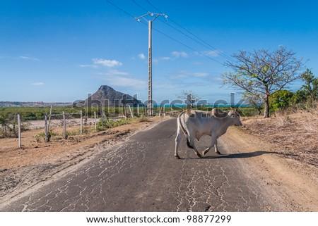 The road of Ramena, near Diego Suarez (Antsiranana), north of Madagascar - stock photo