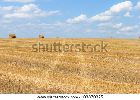 The road through the sloping field. Bundles of hay are on the horizon. - stock photo