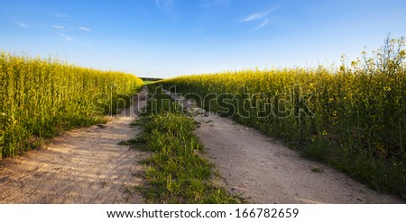 the road to a field - stock photo