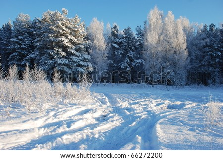 The road to the winter, snow covered forest - stock photo