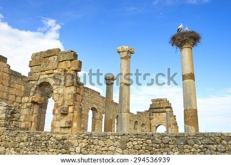 The Roman ruins of Volubilis, Meknes region, UNESCO, Morocco                                       - stock photo