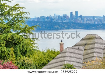 The roof of the house with nice ocean view over downtown.